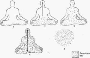 图1. 观照身体觉知的进阶模式,最后变成一种纯粹流转过程,无人无我。